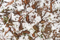 Snow and Leaf Ground Abstraction