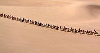 (150602) -- BEIJING, June 2, 2015 () -- Tourists ride camels at the Mingsha Hill scenic spot in the Gobi Desert in Dunhuang, northwest China's Gansu P...