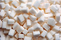 lumb sugar