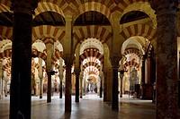 prayer hall, columns, Mezquita inside, Cathedral of Cordoba, Cordoba, Andalusia, Spain