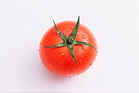 Fruit tomato