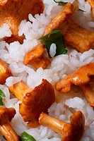 details risotto with chanterelles and parsley