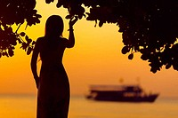 Seashore Silhouette and Sunset