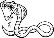 cobra cartoon coloring page
