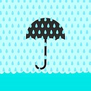 Rain Flood Umbrella