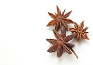 Anise on a white background