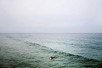 Silhouette of surfer in sea