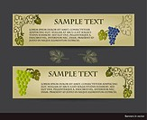 Set of vintage banners with grape vines isolated on a grey background