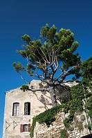 Bonnieux, Vaucluse, 84, Provence-Alpes-Côte d´Azur, France, Europe.