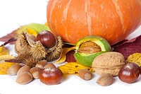 Pumkin, chetsnuts nuts, and walnuts