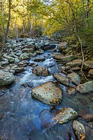 Middle Prong Little pigeon River in the Greenbrier area of Great Smoky Mountains National Park Tennessee.