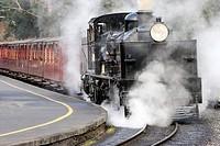 Puffing Billy historic steam railway Melbourne Australia.