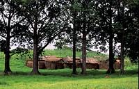 Thatched mud huts village compound near Zebilla, Ghana