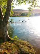 Deschutes River Recreation Area State Park, Oregon, USA.