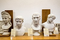 Reproduction Roman busts for sale in museum shop at the Vatican Museum in Rome, Italy.
