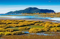 Santoña, Victoria and Joyel Marshes Natural Park. Colindres, Cantabria, Spain.