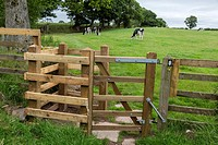 Hadrian´s Wall. A Kissing Gate keeps livestock in the pasture. Cumbria, England, UK.