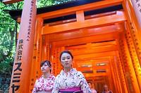 Geishas in Kyoto, Japan. Fushimi-Inari Taisha Shrine, Toriies
