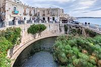 Fonte Aretusa, Ortigia, Siracusa, Sicily, Italy.