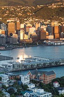 New Zealand, North Island, Wellington, elevated city skyline from Mt. Victoria, dawn.