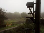 bird feeder on a foggy day.