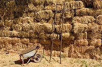 Steel ladder and wheelbarrow beside a wall of hay bales Shymkent South Kazakhstan Region.