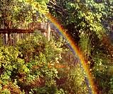 Poland. Rainbow in garden