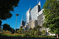 gardens and high rise buildings along Macquarie Street, Sydney.