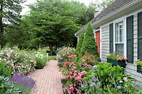 A home and garden seen during the 2016 Hydrangea Festival, Barnstable, Cape Cod, Massachusetts, United States, North America. Editorial use only.