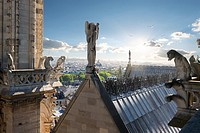 Statues of Angel and Chimeras on the roof of Notre Dame de Paris, France.