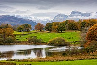 Loughrigg Tarn with Lingmoor, Bow Fell and the Langdale Pikes beyond. Lake District National Park, Cumbria, England.