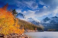 Fall aspens under Sierra peaks from South Lake, John Muir Wilderness, Sierra Nevada Mountains, California USA.