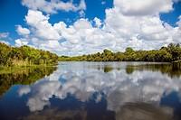 Deer Prairie Creek Preserve in Venice FLorida.