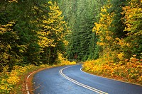 West Cascades Scenic Byway, Willamette National Forest, Oregon.