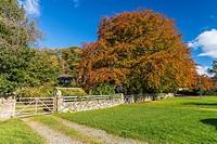 Nether Wasdale, Lake District National Park, Cumbria, England, United Kingdom, Europe.