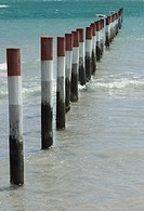 Poles marking a boating slipway at the edge of a lagoon. Western Cape Province, South Africva.