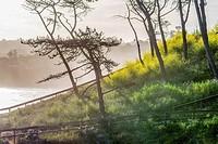 The La Jolla, California coastline photographed on a Spring morning.