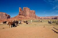 Horses riding at Monument Valley, Arizona, United States.