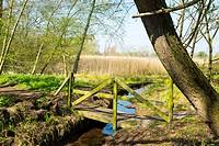 Wooden footbridge over stream in Cheshire countryside UK