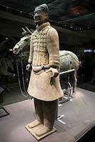 Terracotta warriors of Qin Shihuang, Xian, China.