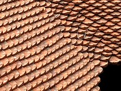 Roof of Temple of Literature. Dai Tanh sanctuary, Hanoi, Vietnam. Detail of the tiles.