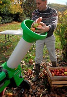 Juice extractor for making natural and organic apple juice - Step 1: grinding and shredding apples fruit