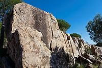 Granite in the Cuba hill. Cadalso de los Vidrios. Madrid. Spain. Europe.