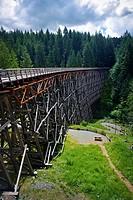 Kinsol Trestle wooden framework bridge over Koksilah river, summertime nature scenery, Shawnigan Lake, Vancouver Island, British Columbia, Canada.