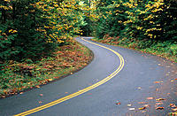 Fall color along McKenzie highway. Willamette National Forest. Oregon. USA