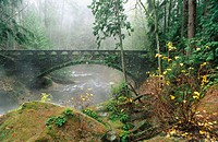 Bridge over Whatcom Creek. Whatcom Falls Park. Bellingham. Washington, USA