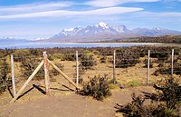 Torres del Paine National Park. Magallanes XIIth region. Chile.