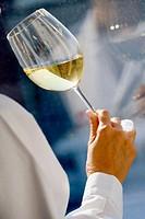 Tasting white wine, Chiva. Hoya de Buñol, Valencia province, Comunidad Valenciana, Spain