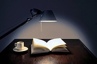 Book, Desk lamp, Desk light