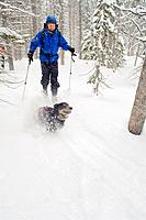 Skier and dog in the Wallowas - Wallawa Mtns , Oregon